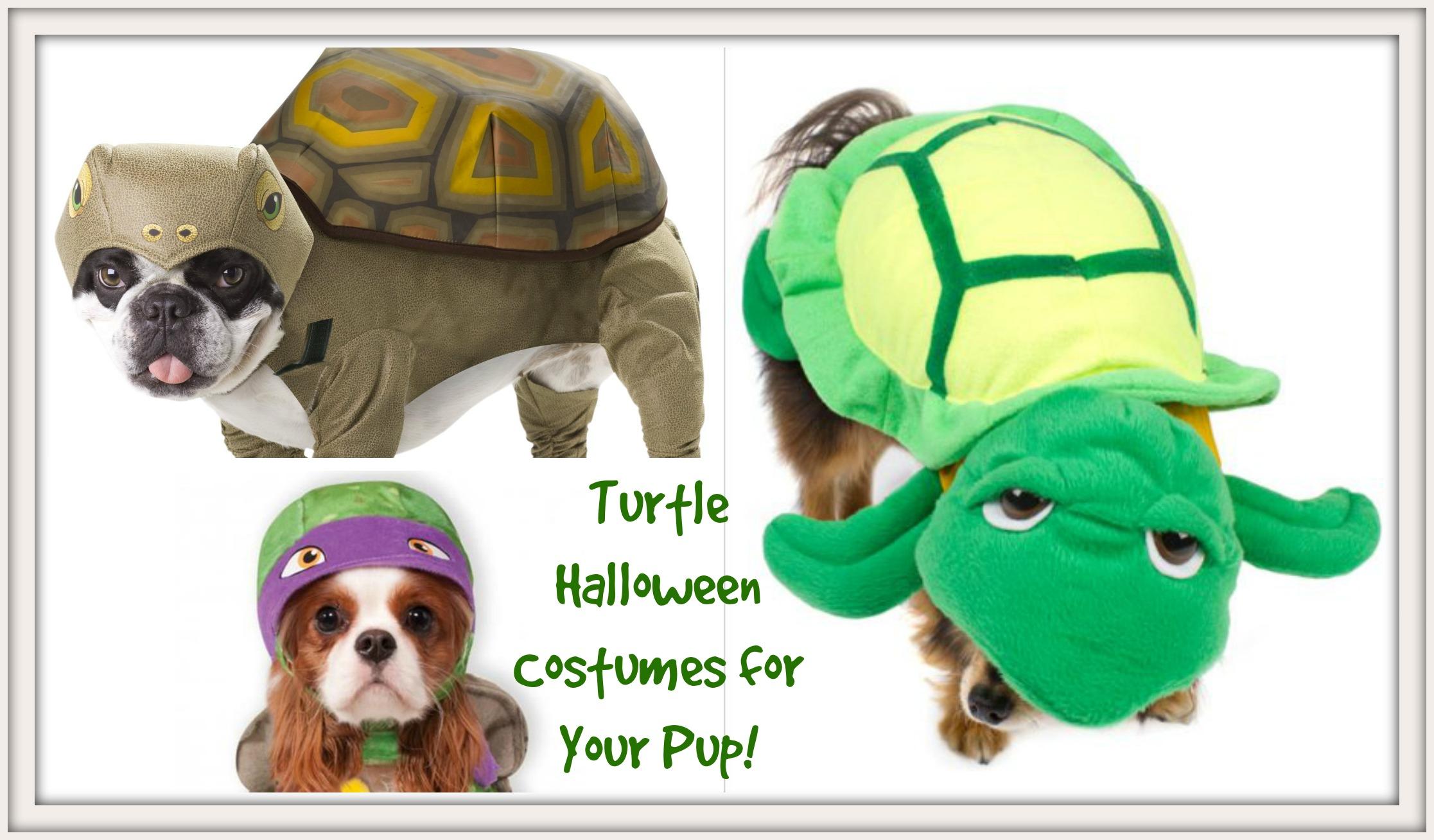 Dog Turtle Halloween Costumes